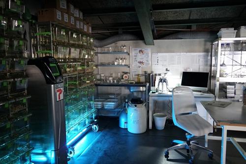紐倉研究所の研究用の道具も本格的なもの