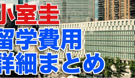 【内訳】小室圭の弁護士留学費用は貸与?生活費は?詳細をまとめてみた
