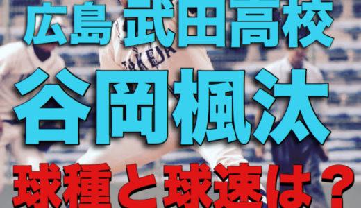 【ドラフト候補2019】急成長中!武田高校の谷岡楓太の球種と球速とは?