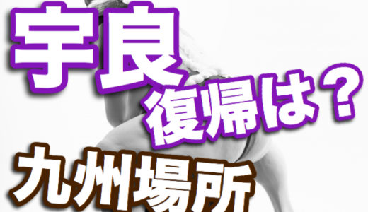 【九州場所2019】大相撲人気力士の宇良和輝の本場所復帰はある?
